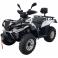 Квадроцикл Linhai LH300ATV-3D